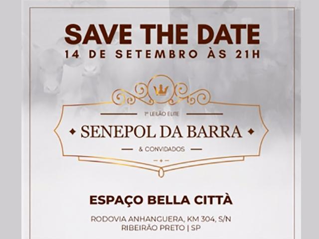 1º Leilão Elite Senepol da Barra & Convidados