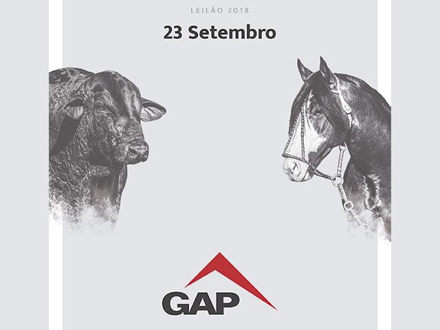 Leilão GAP