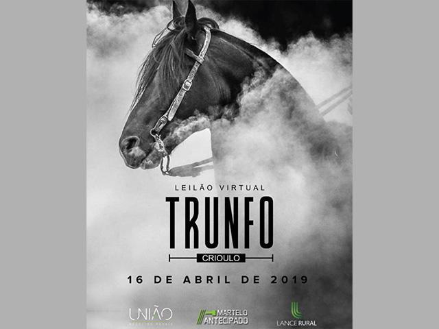 Leilão Virtual Trunfo Crioulo