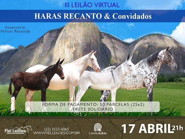 III Leilão Virtual Haras Recanto & Convidados