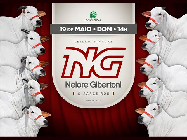 Leilão Virtual Gibertoni e Convidados