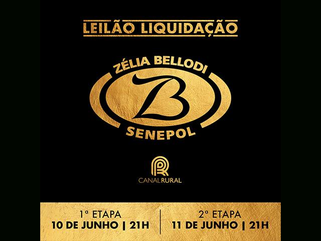 Leilão Virtual Liquidação Senepol ZB – Zelli Bellodi – 2ª Etapa