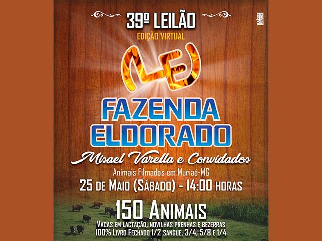 39º Leilão Eldorado – Virtual