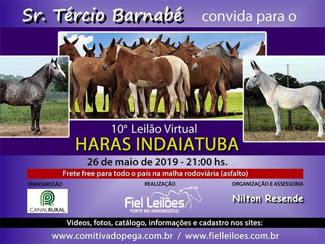 10° Leilão Virtual Haras Indaiatuba