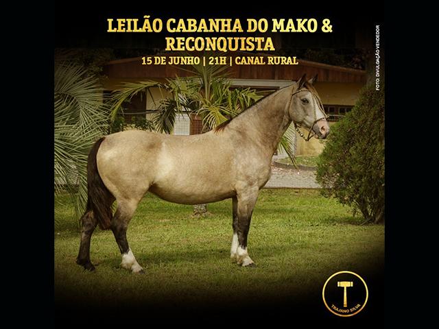 Leilão Mako & Reconquista