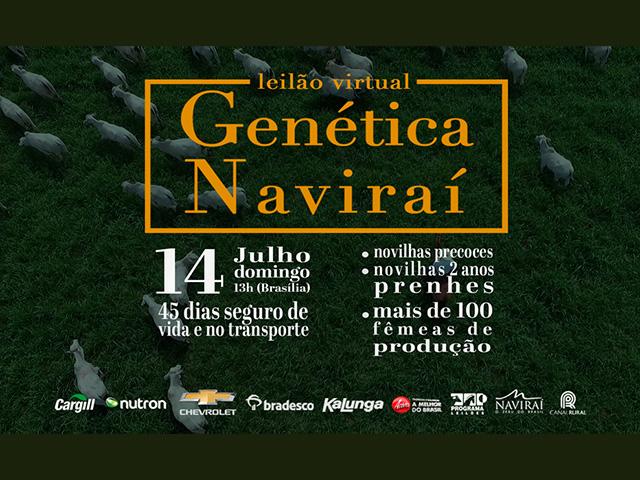 Leilão Virtual Genética Naviraí