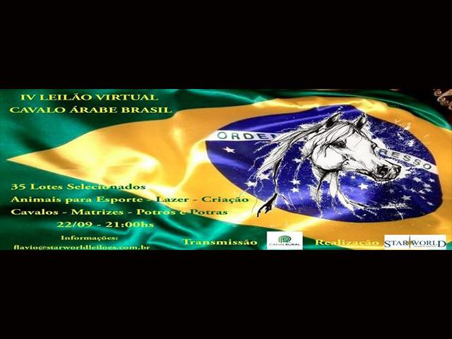 III Leilão Virtual Cavalo Árabe Brasil
