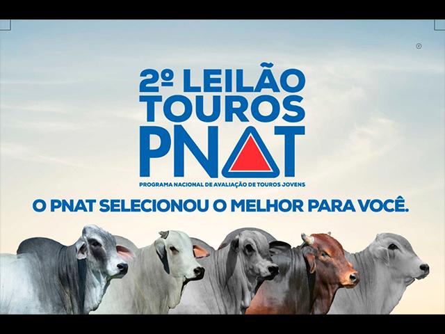 2º Leilão Touros PNAT
