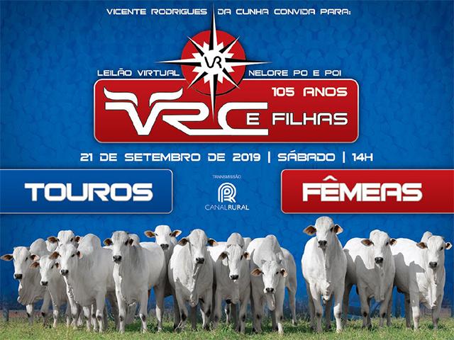 Leilão VRC 2019