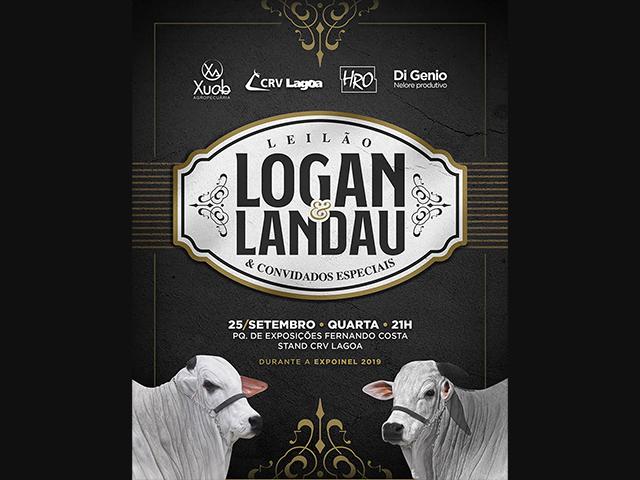 Leilão Logan & Landau & Convidados Especiais