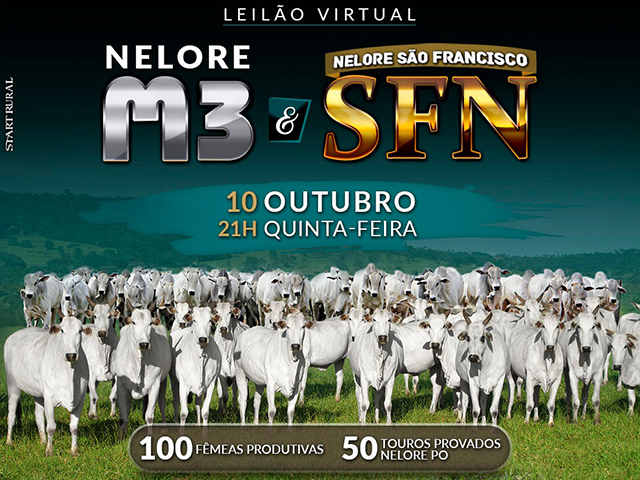 Leilão Virtual M3 & Nelore SFN