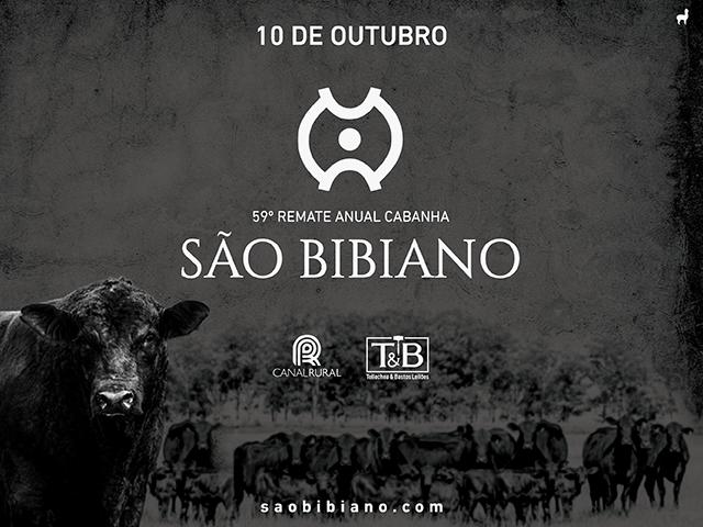 Remate Anual Cabanha São Bibiano