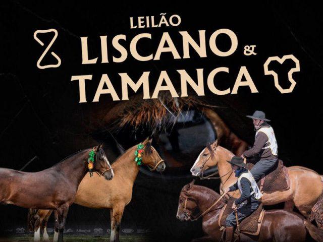 Leilão Liscano & Tamanca