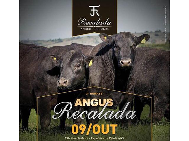 Remate Angus Recalada