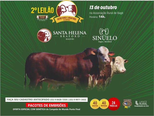 banner_leilao_site_pedro(2)