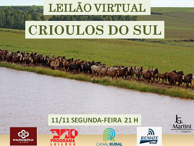 Leilão Virtual Crioulos do Sul