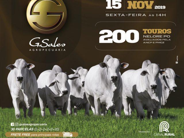 6º Leilão Virtual GSales Agropecuária
