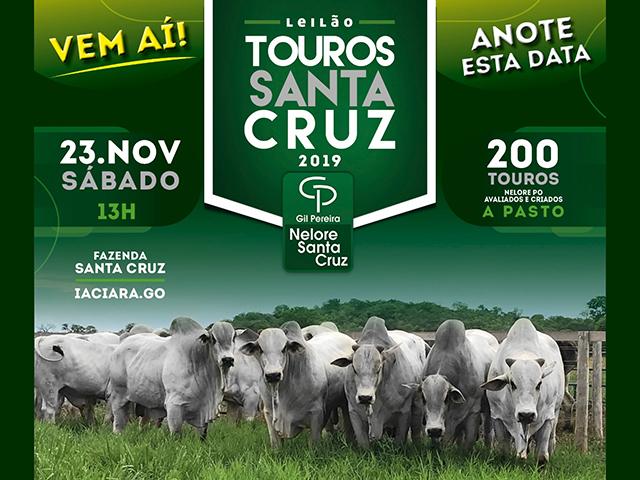 Leilão Touros Santa Cruz 2019