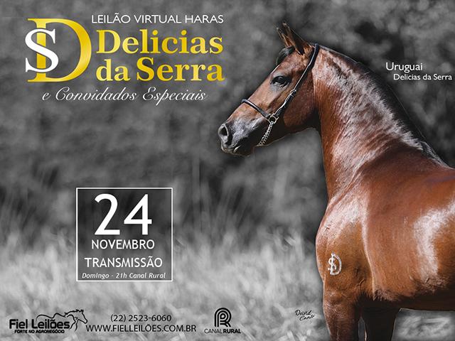 Leilão Virtual Haras Delícias da Serra & Convidados Especiais