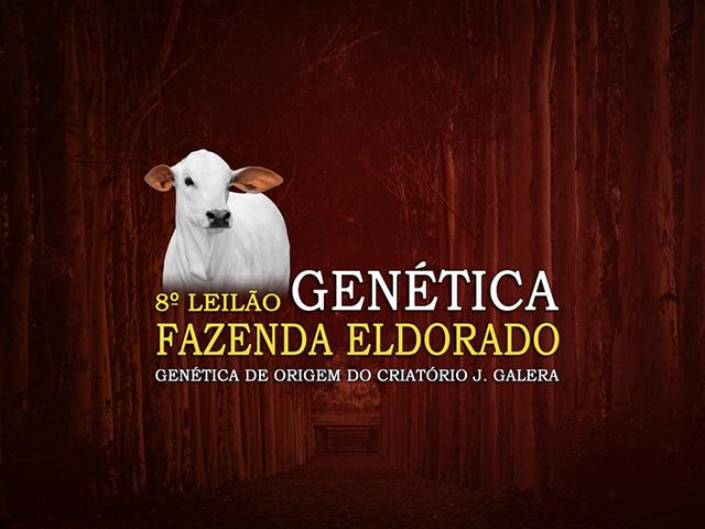 8° Leilão Virtual Fazenda Eldorado