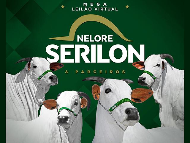 Mega Leilão Virtual Nelore Serilon & Parceiros