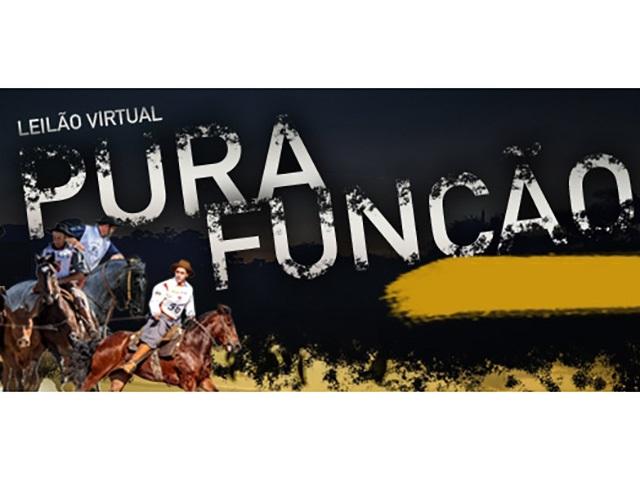 Leilão Virtual Pura Função