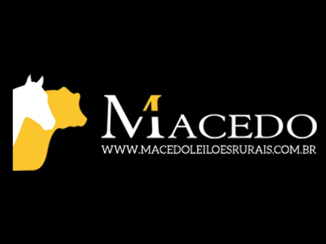 Leilão Virtual Macedo Leilões