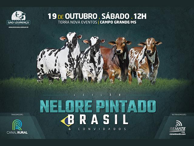 NELORE_PINTADO