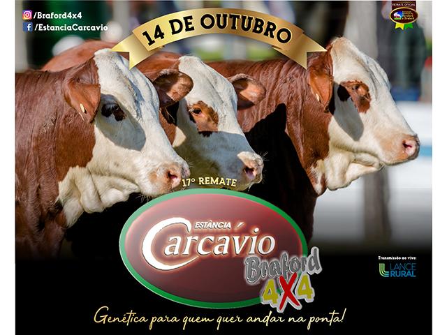 REMATE CARCÁVIO 2019 - 14 de outubro
