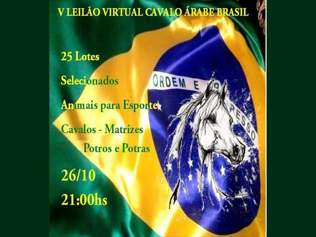 V Leilão Virtual Cavalo Árabe Brasil