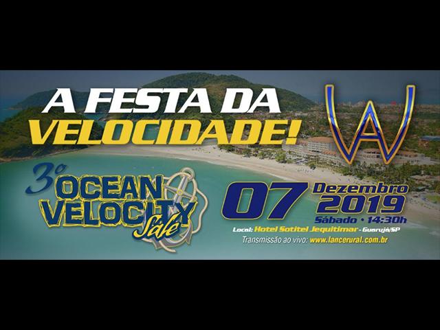 3º Leilão Ocean Velocity Sale