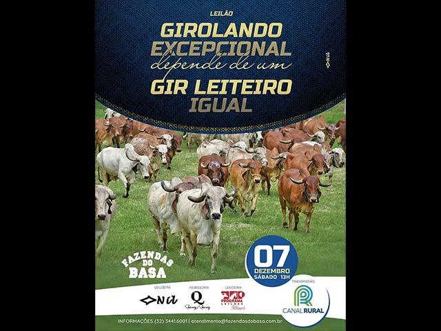 AO VIVO: Leilão Girolando Excepcional Depende de Um Gir Leiteiro Igual