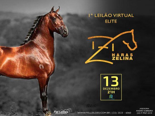 I Leilão Elite Haras Zelina