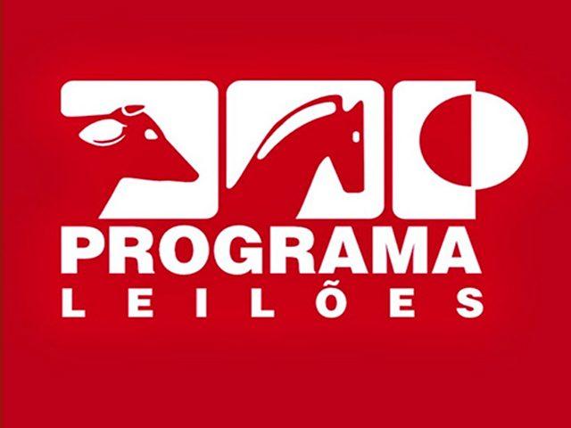 programaleiloes-640x480