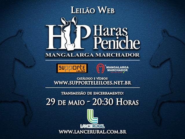 Haras Peniche oferta exemplos de marcha nesta sexta-feira