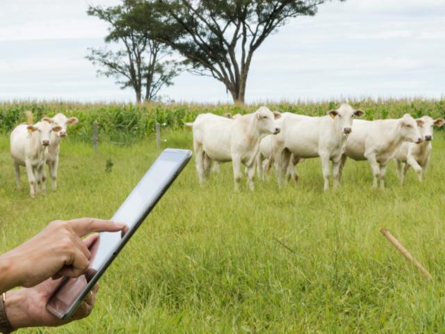 ASBIA reforça o uso da tecnologia para o futuro da pecuária