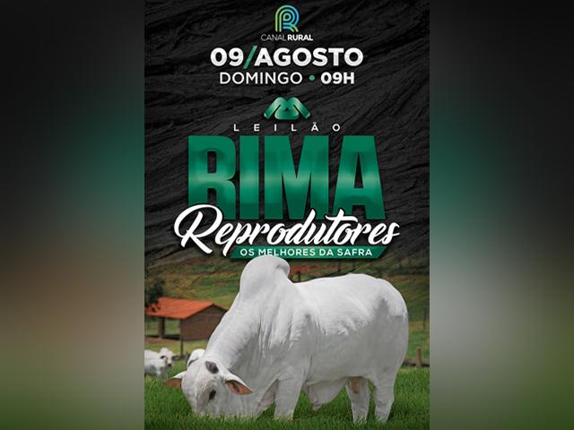 Rima Agropecuária oferta 80 touros em leilão virtual