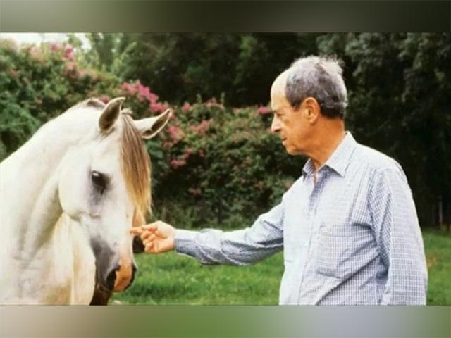 Morre fundador da Associação dos Cavalos Árabes