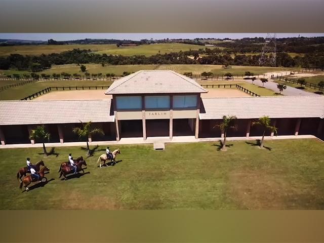 Tarlim Weekend: A inovação e qualidade da raça Mangalarga