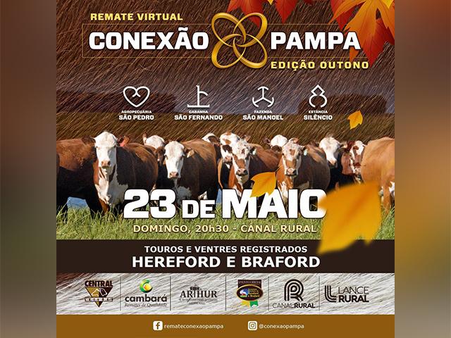Remate Virtual Conexão Pampa - Edição Outono (23.05)